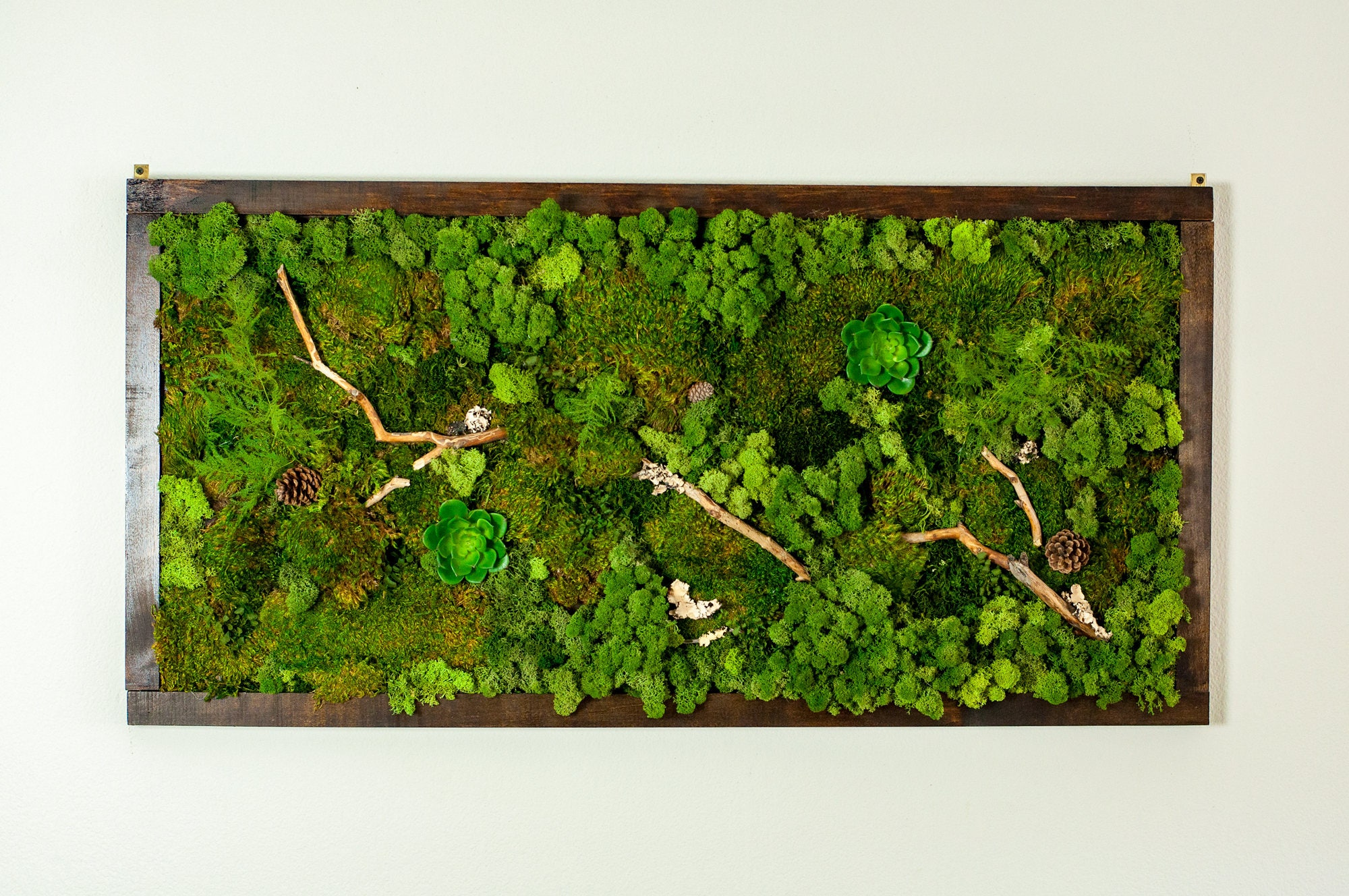 preserved moss wall art 48 x 24 green wall art no care. Black Bedroom Furniture Sets. Home Design Ideas