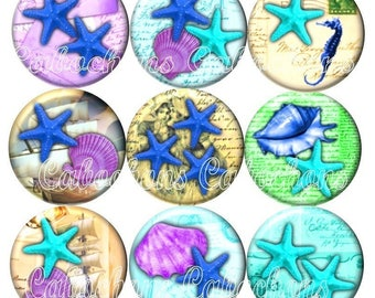 Set of 15 cabochons 16mm glass, holiday, shells, starfish, seahorse ref ZC240