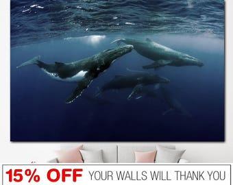 Humpback Whale, Whale Canvas, Humpback Whale Print, Sea Life, Whales Print, Sea Life Canvas, Whale Wall Art, Whale Wall Decor, Ocean Life