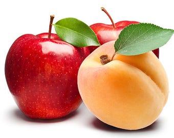 Organic Apple Apricot Doggie Dessert