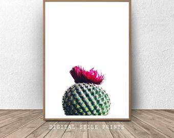 Cacti Print, Cactus Wall Art, Modern Art Print, Cactus Print, Printable Art, Cactus photography print, Home Decor, Art Print, Printable gift