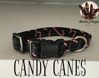 Candy Cane Christmas Collar