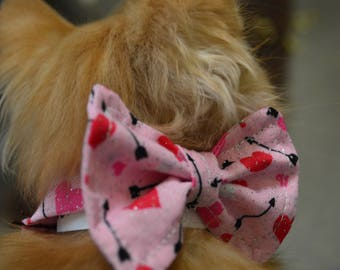 Cupids Arrow Kitten And Puppy Bow Tie