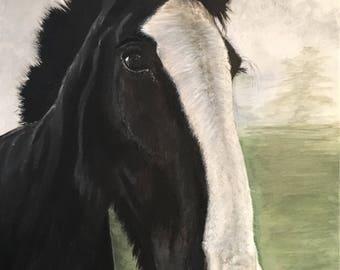 EXAMPLE - Horse Portrait