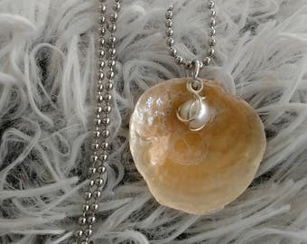 Jingle Shell & Freshwater pearl necklace