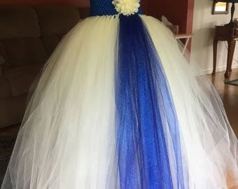 Blue and Beige tulle dress
