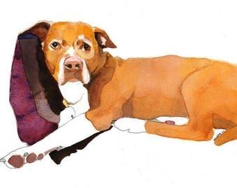 "Custom Pet Portrait, Simple Background 14""x11"""