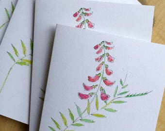 Watercolor Blank Note Cards - Bird Vetch - Weed Wildflower Note Cards - Floral Watercolor Cards - Botanical Note Cards - Set of 6