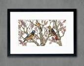 Northern Flicker and Chickadee Birds in Tree Art Print