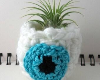 Aqua Eyeball Air Plant Pot