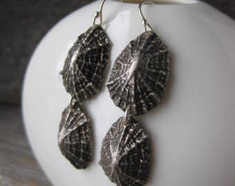 Saint Barthelemy double LIMPET sterling silver post dangle earrings
