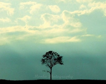 "50% OFF SALE Nature Photograph, Landscape Picture, Teal, Blue, Sky, Clouds, Monochrome,  Minimalist, Tree Photography- 5x5 inch Print, ""One"