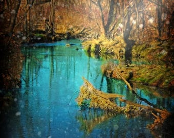 50% OFF SALE Nature Photo, Landscape Photograph, Trees, Stream, Water, Blue, Green, Yellow, Enchanted, Surreal, 5x5 inch Print- A Shift in T