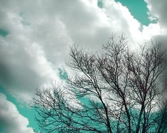 50% OFF SALE Nature Decor Spring Teal Tree Photograph Aqua Art Photo of Clouds and Trees in the Sky 5x5 Inch Fine Art Photography Print If Y