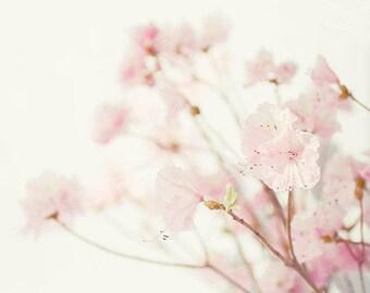 Pink Azalea Photograph,  Floral Art Print, Flower Wall Art, Flower Photography, Bedroom Print, Nursery Art