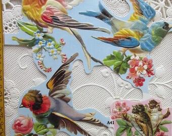 Vintage England Paper Lithograph Die Cut Scraps Victorian Birds Out Of Print A-41