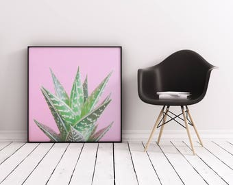 Succulent Print, Botanical Art, Gift for Gardener, Pink Wall Art - Pink Aloe Tiki