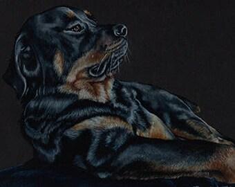 Rottweiler Art Note Card