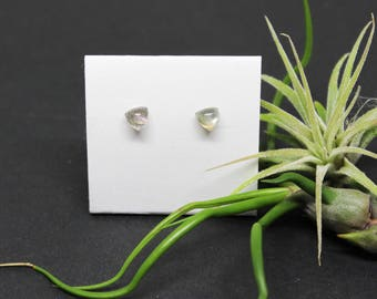 Labradorite Gemstone . SMALL 5mm Domed Triangles . Sterling Silver Posts Studs Earrings . Soft Gray with Blue Flash . E16166