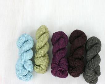 MINI SKEIN sock yarn set, FAVE sock: Jess
