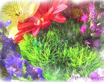 Instant Download Fairytale Flower Garden Photo