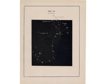 1891 SCORPIO CONSTELLATION PRINT - original antique celestial star map  astronomy print