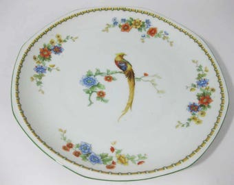 Bird of Paradise By M Z Altrohlau CM-R Luncheon Plate Czech Circa 1916