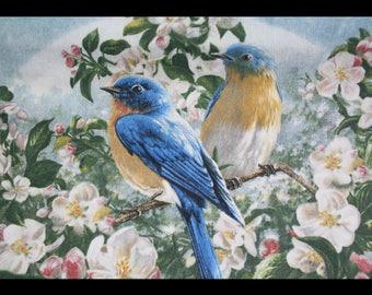 Garden Birds & Flowers Pillows