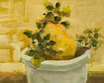 Pear in a pot of coleus