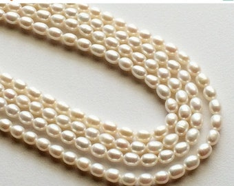 ON SALE 55% Pearls - Natural Pearls, Natural Fresh Water Rice Pearls, Ivory Color Pearls, 6.5mm x 5.5mm Each, 16 Inch Strand, 60 Pieces, Who