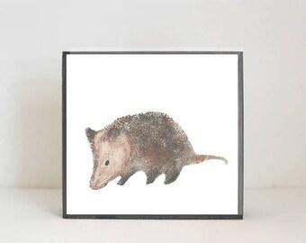 woodland nursery art- opossum art print- forest animals- nursery woodland art- animal print- nursery forest - decor- redtilestudio