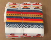 4 yards Southwest Border Print Vintage Poly Knit