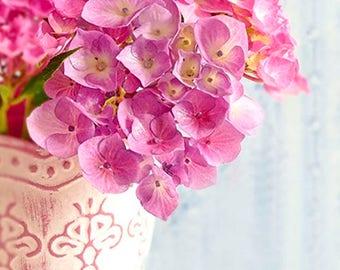 Pink Hydrangea Photography, Still Life, Botanical Photography, Flower Photography, Garden Photography, Pink Flower, Hydrangea