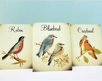 Reserved Listing for Megityann, Vintage Bird Table Cards and Place Cards