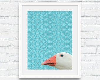 Peekaboo Goose Portrait Printable, Photo Montage Animal Wall Art, Goose photography, Nature, Aqua Bathroom Art, Geometric Digital Printable