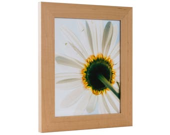 "Craig Frames, 12x16 Inch Natural Hardwood Picture Frame, American Maple, 1.5"" Wide (83076RM21216)"
