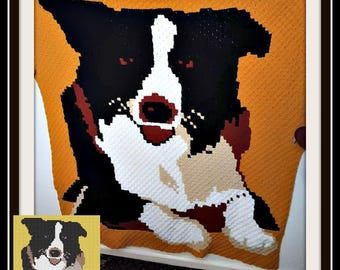 Border Collie Afghan, Border Collie Crochet Pattern, Border Collie C2C Graph, Corner to Corner, Border Collie 2 Afghan