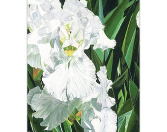 Traditional Wall Art 'Helens Iris' by Cathy Pearson - Floral Decor Traditional Iris Artwork on Metal or Plexiglass