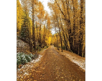 Landscape Photography 'Mountain Pass' by Meirav Levy - Autumn Trees Art Traditional Nature Decor on Metal or Plexiglass