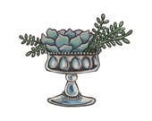 Succulent in a Goblet - 2...