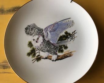Vintage Owl Plate Ready-To-Hang