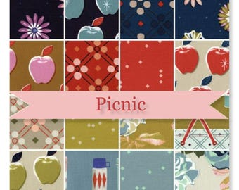 Picnic by Melody Miller for Cotton + Steel 10x10 Quilt Squares 40 in Bundle