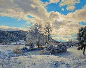 Print of 'Snowy Pond' Original Oil Painting by Jurgen Wilms, 8x10 inches, Southwestern Landscape Painting, Snowscape, Winter Snow