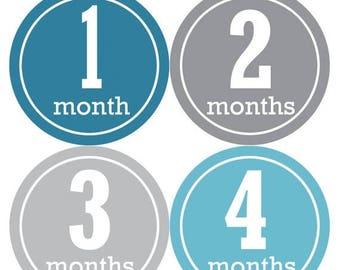 Baby Month Stickers, Baby Boy Gift, Milestone Stickers, Monthly Sticker, Monthly Baby Boy Stickers, Baby Month Milestone Stickers 163