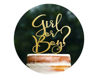 Cute Boy or Girl Cake Topper, Gender Reveal Topper, Gender Reveal Party, He or She Cake Topper, Baby Shower Cake Topper, Cake Decor (T374)