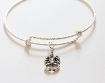 Sterling Silver Bracelet with Sterling Silver Scorpion Charm, Scorpion Charm Bracelet, Scorpion Bracelet, Scorpion Pendant Bracelet