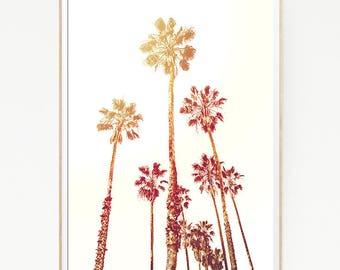 Palm Trees Wall Decor Print Poster Tropical Beach Marine Art Landscape Colour Nature Sea Minimalist Banana Leaf Photography Sky Sun 1028