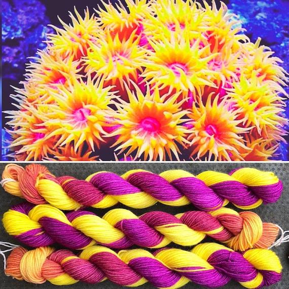 Anemone Miniskein 20g, sea life inspired merino nylon sock yarn