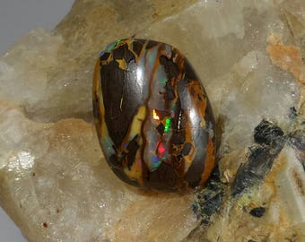 Natural, boulder opal - 19.60ct, fancy cabochon cut, loose gemstone, sourced from Queensland, Australia