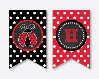 Instant Download, Ladybug Party Banner, Ladybug Happy Birthday Banner, Ladybug Party Printable, Ladybug Decoration, Chalkboard (CKB.26)